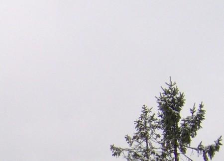 """Krzysztof Alexandrowicz """"Gray snowy"""", 2012"""